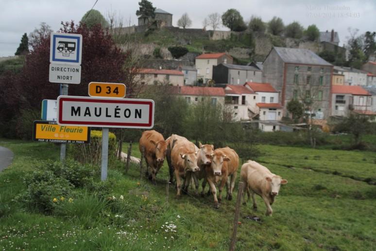 Mauléon, Les Deux-Sèvres, poitou-Charentes, France.